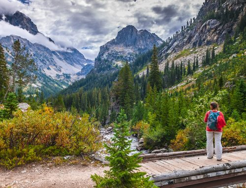 Hikes You Must Take if You Love the Outdoors
