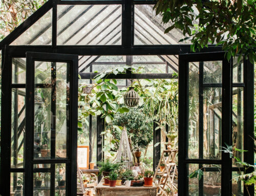 Small, Envy-Inducing Greenhouses